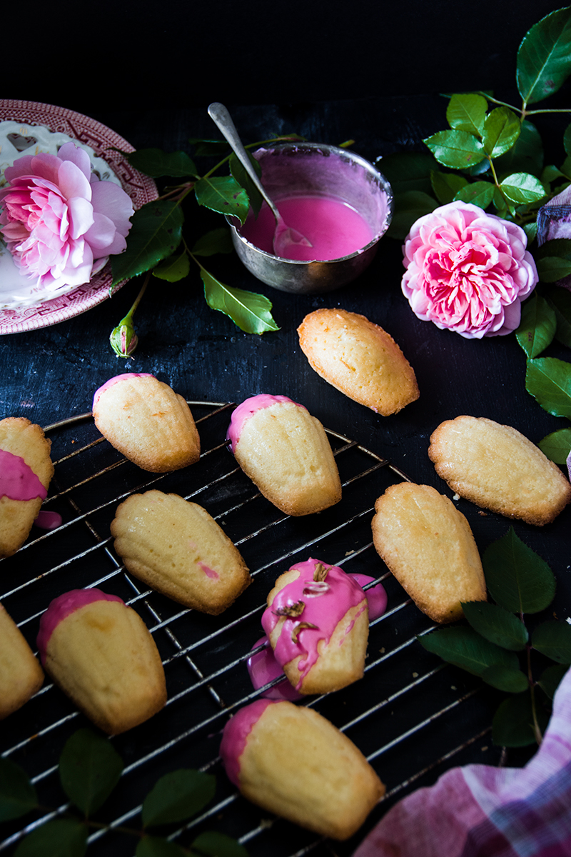 Rose water Madeleines