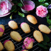 Rose flavoured madeleines